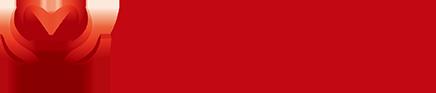 ガイアモーレ株式会社:ガイアモーレ株式会社